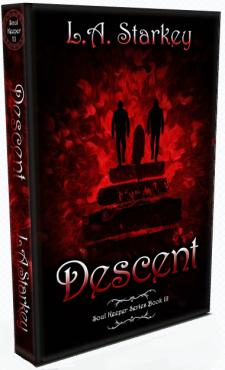 Descent 3D