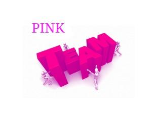 YASH Team Pink 2015