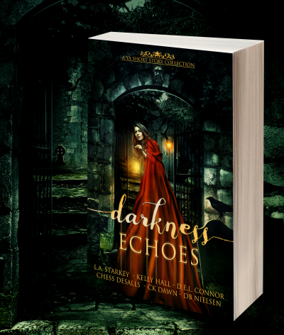 Darkness Echoes 3D Image of Book Cover Black